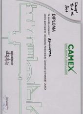 camex2006